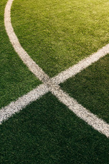 White Lines On Soccer Field