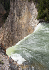 The Brink of the Falls of the Yellowstone River with green water in the foreground and a rocky cliff in the background. Pine trees are in the background.