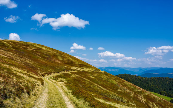 footpath through hills with forest. beautiful nature scenery in fine early autumn weather