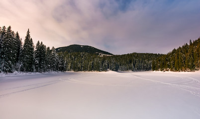 frozen lake in snowy spruce forest. gorgeous winter landscape in mountains at moody sunrise
