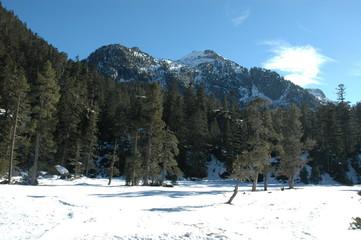 L'hiver, Vallée du Marcadau, près du Pont d'Espagne et de Cauterets, dans les Pyrénées.
