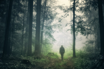 Man walking alone in magical dark green colored foggy wild forest landscape.