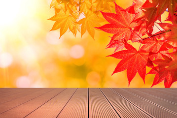 Wall Mural - Autumn maple leaves and wooden floor