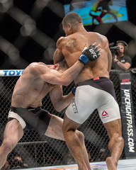 MMA: UFC Fight Night-Trujillo vs Rinaldi