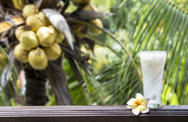 Fresh coconut juice on wooden fence over blurred coconut tree background, healthy drink