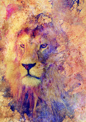 Lion face and graphic effect. Computer collage.