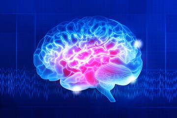 Human brain on a dark blue background. Digital illustration