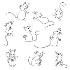 Funny, lovely mice.