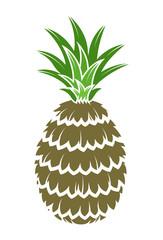 Brown Pineapple Vector