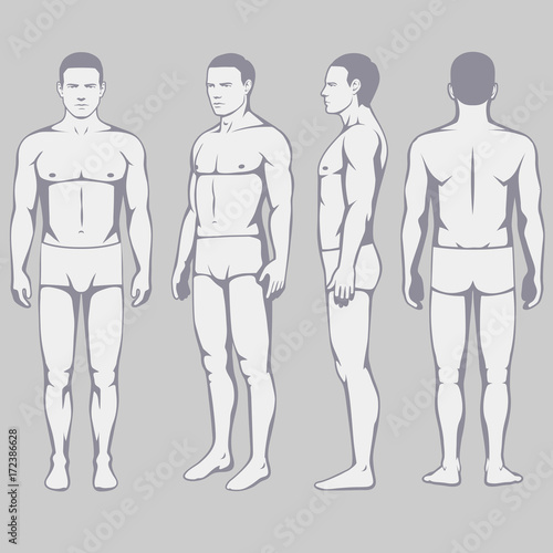 Human body anatomy vector man silhouette front back side stock human body anatomy vector man silhouette front back side ccuart Image collections