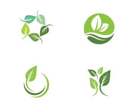 Tree leaf ecology nature vector icon