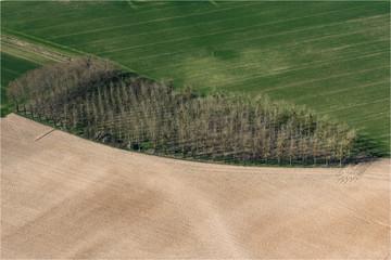 Vue aérienne de champs et de culture d'arbres en Loir-et-Cher - France
