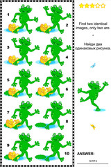 Visual puzzle: Find two identical images of playful frogs. Answer included.