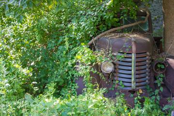 parked truck - forgotten