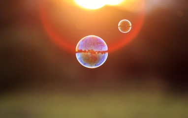 beautiful iridescent soap bubbles with reflection landscape flies to sunset over summer meadow
