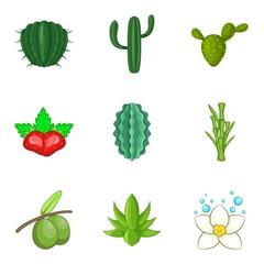 Vegetation icons set, cartoon style