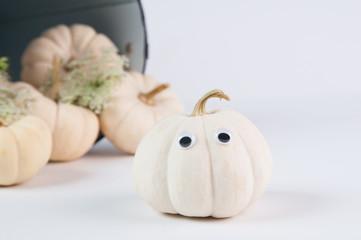 cute little halloween pumpkin