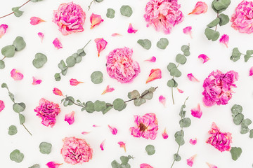 Pattern of pink roses and eucalyptus branches isolated on white background. Flat lay, top view. Flower background