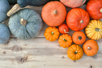 Various colors of pumpkins and squashes