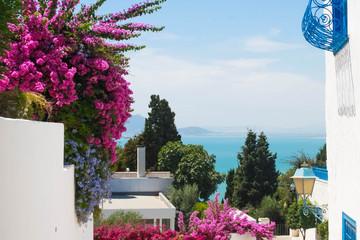 Flowers in Sidi Bou said