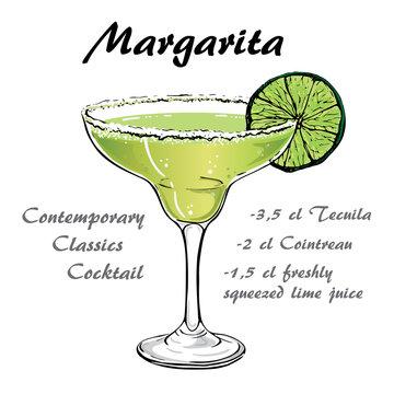 margarita cocktail vector2