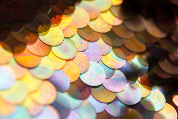 sequins pattern texture