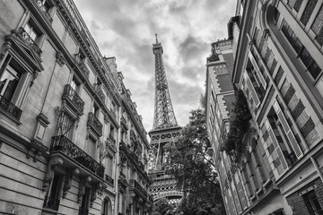 View of the Eiffel Tower in Paris, France black and white colored