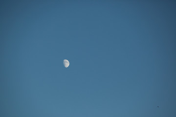 Partial Moon in Daytime