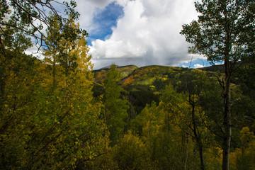 Colorado Góry jesienią z drzew zmienia kolor