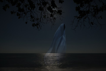 Low key image of ghost in the night on the beach.