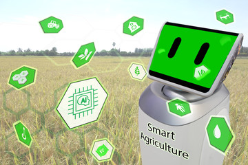 Wall Mural - iot, internet of things, agriculture,robot technology concept, robotic help and management, analysis the data in the farm