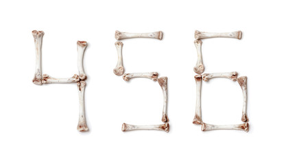 Figures are made up of chicken bones on white background