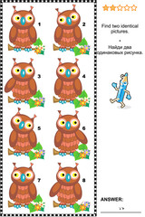 Visual puzzle: Find two identical pictures of cute wise owls. Answer included.