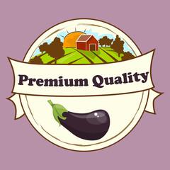 whole ripe vegetable purple eggplant,with green stem