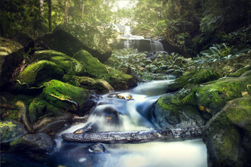 Amazing waterfall with beautiful scenery in the forest
