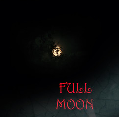 Picture full moon in darkness