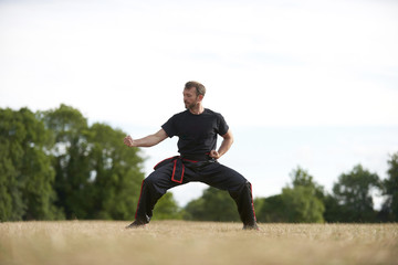 Man practicing Kung Fu in park