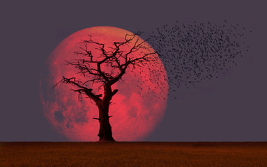 """Dead tree wtih super moon  """"Elements of this image furnished by NASA"""