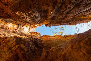 Crevice in the red loamy wall of Providence Canyon bottom view in sunny day, USA