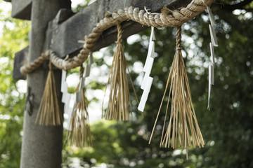Close-up of shimenawa hanging at shrine