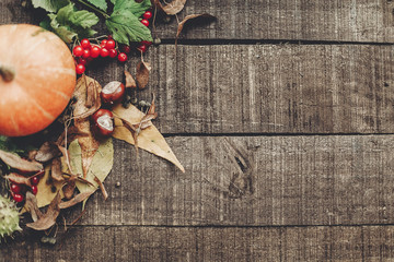 fall photo, beautiful pumpkin with leaves and berries on rustic wooden background, top view. space for text. thanksgiving or halloween concept greeting card flat lay. cozy autumn mood. holiday