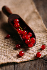 Red currant branch in a wooden scoop