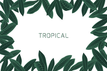 Tropical border with plumeria leaves. Vector illustration