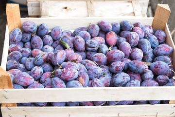 ripe plum of the box