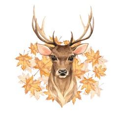Noble deer. Watercolor illustration