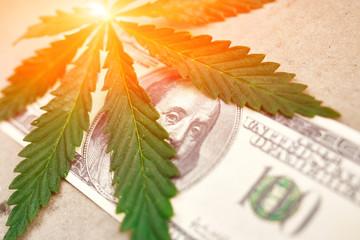 Money With Marijuana Leaf Close Up High Quality. Cannabis With Money Stock Photo