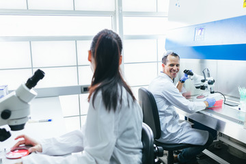 Young Researchers Working in a Professional Laboratory