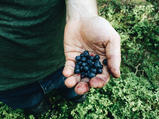 Man holding blueberry on his hand