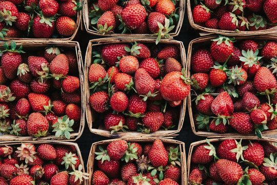 Fresh picked strawberries in garden boxes.