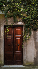 Wooden doors with liana flowers hanging on wall.Italy.